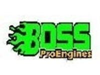 Immagine per la categoria Boss Motori per Modellismo Boss e Bliss RC